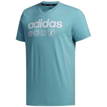 Adidas  M T P.BLUE