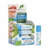Dr. organic aloe vera m/mint leppepomade 5,7ml