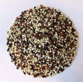 Øko Quinoa Blandet