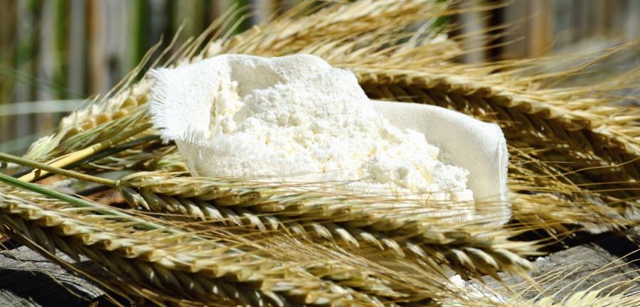 Økologisk Havremel Glutenfri