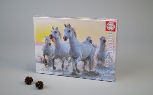 1000 White Horses at Sunset