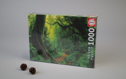 1000 Enchanted Forest