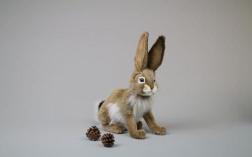 Hare Beige 23 cm H