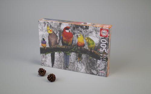 500 Birds Colour Black & White