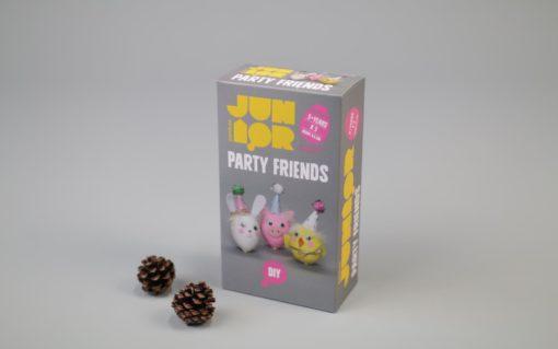 DIY KIT PARTY FRIENDS