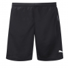 Puma  LIGA Training Shorts RSK