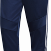 Adidas  TIRO19 TR PNT