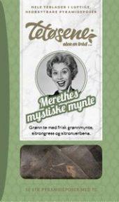 Merethes mystiske mynte