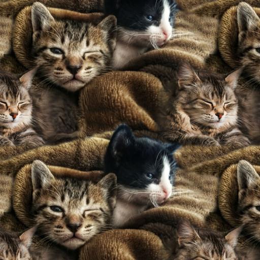 Jersey med katter