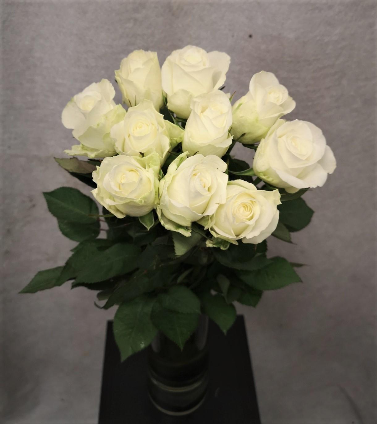 Bukett hvite roser