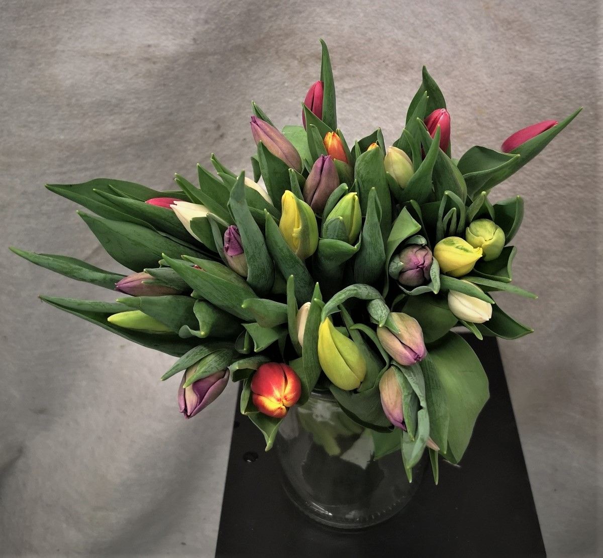 Bukett mix tulipaner 30 stk
