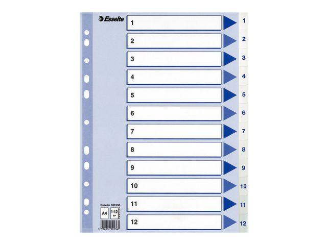 Register ESSelte Plast A4 1-12 blå/hvit