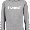 Hummel  KESS HOODIE NOOS