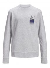 JACK & JONES JORWANDER SWEAT CREW NECK JR