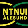 Klubbtrykk NTNUI-Ålesund
