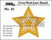 Stjerne CNLS21