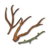 Branches & Stem