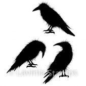 Crow Set