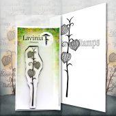 Fairy Lantern LAV587