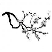 Cherry Blossom - LAV176