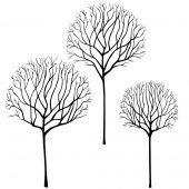 Skeleton Tree Scene -