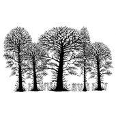 Trees - LAV052
