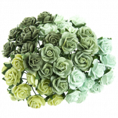 GREEN  MIX MULBERRY PAPER OPEN ROSES