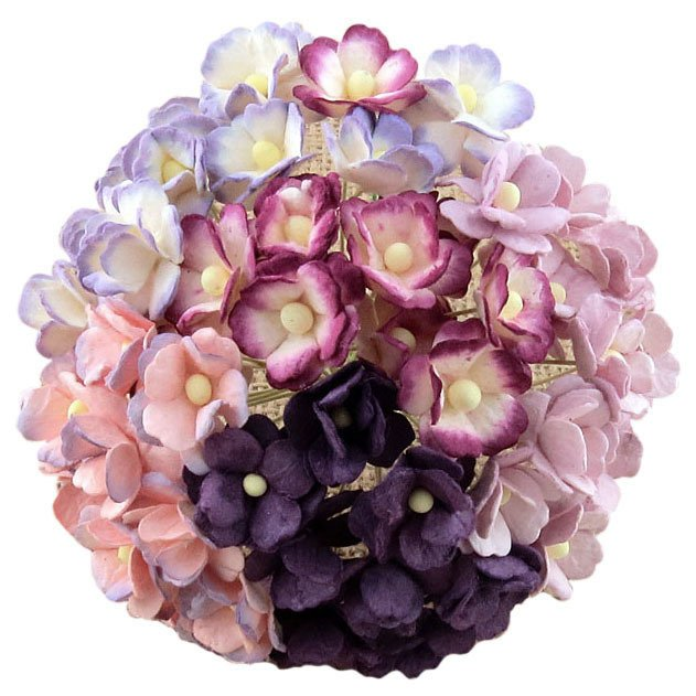 MIXED PURPLE/LILAC & WHITE SWEETHEART BLOSSOM