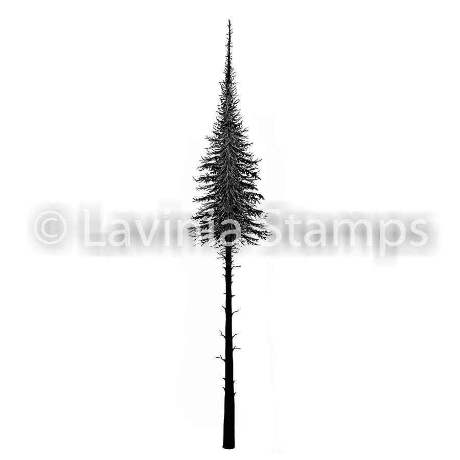 Fairy Fir Tree LAV478