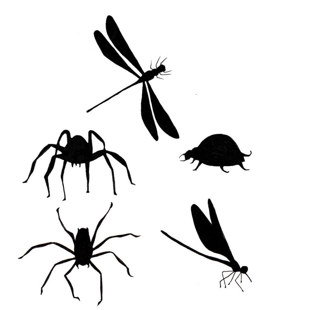Bugs - LAV156