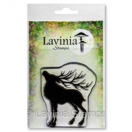 Lavinia - Magnus - LAV639
