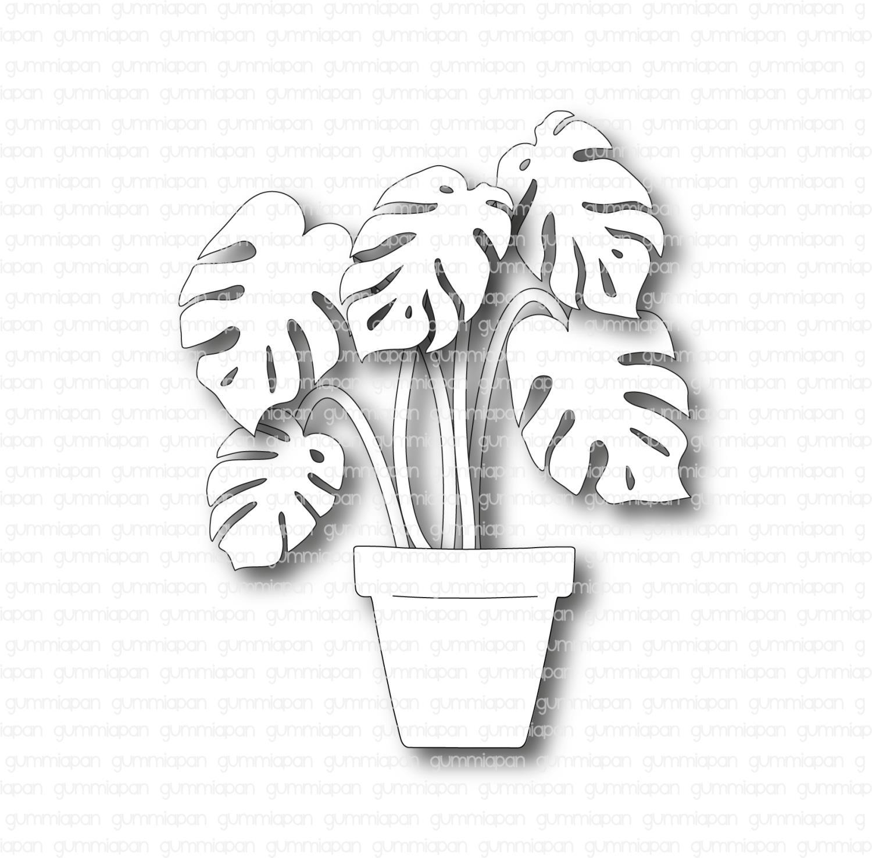 Gummiapan - Monsteraväxt - Dies