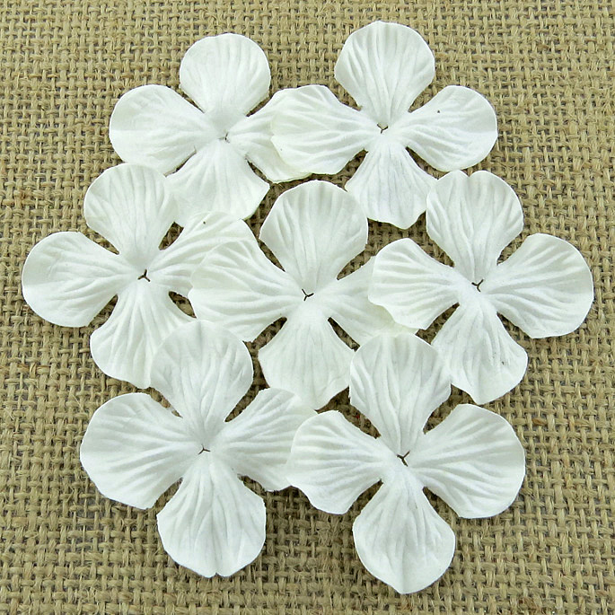 Wild orchid craft - 100 WHITE HYDRANGRA BLOOMS