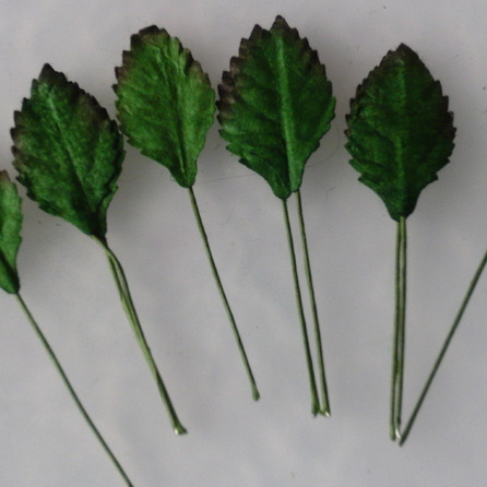 Wild orchids - 100 GREEN MULBERRY PAPER ROSE LEAVES -