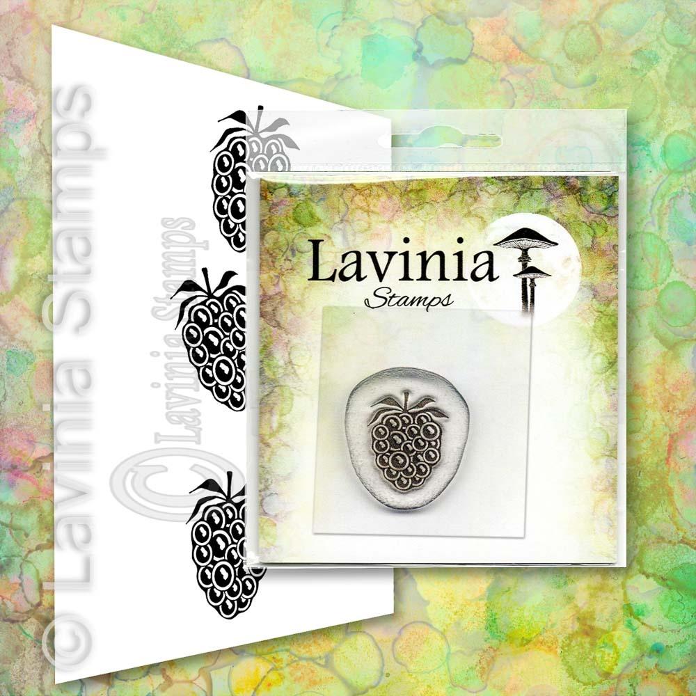Lavinia - Mini Blackberry - (Miniature) LAV665
