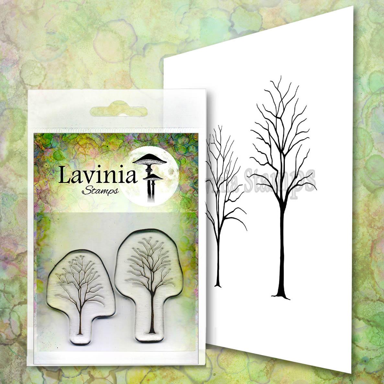 Lavinia - Small Trees - Lav663