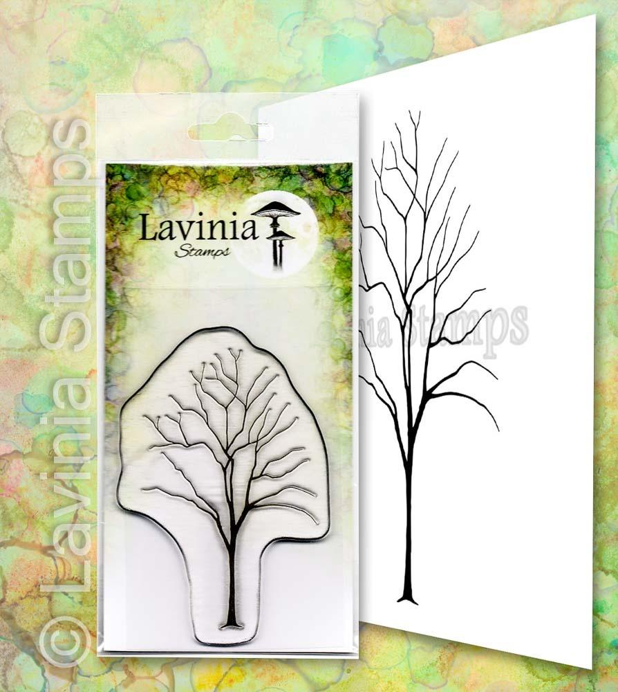 Lavinia - Elm - Lav652
