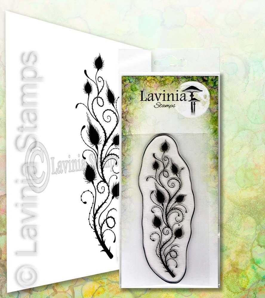 Lavinia - Thistle - Lav656