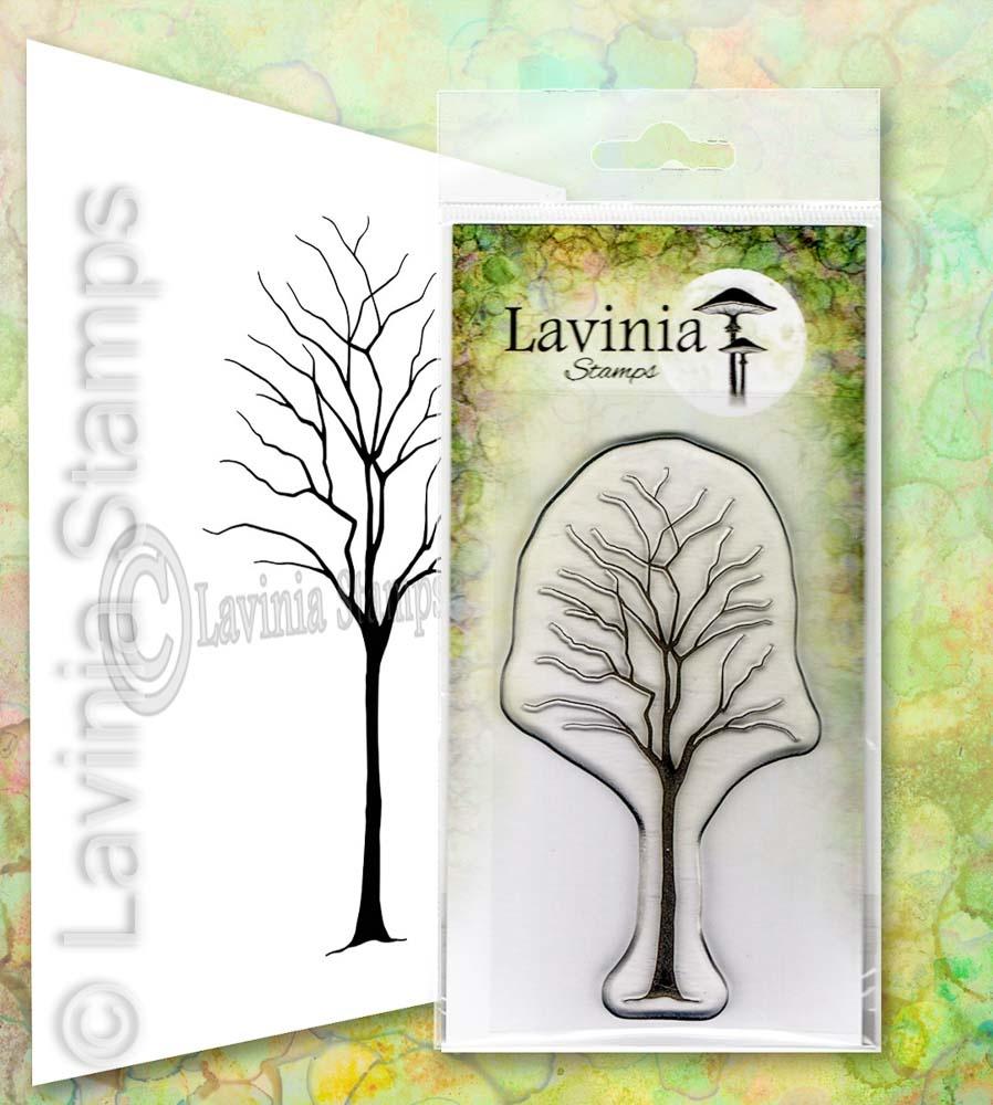 Lavinia - Birch- Lav649