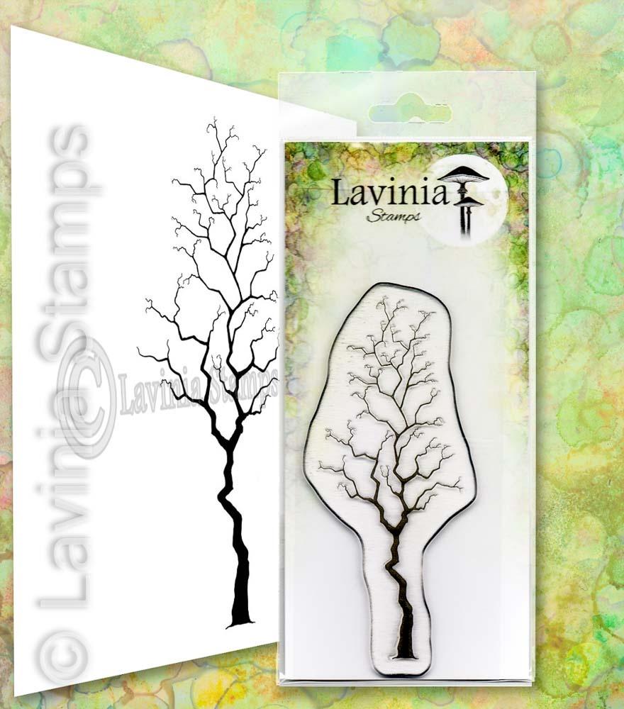 Lavinia - Hazel- Lav660