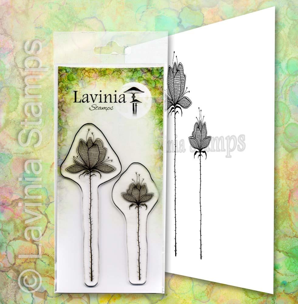 Lavinia - Lilium Set - LAV654