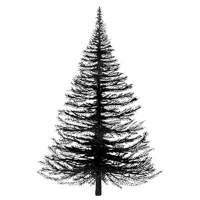 Lavinia - Fir Tree - Lav022