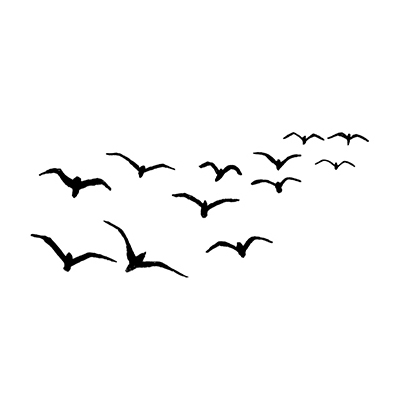 Lavinia - Birds- 097