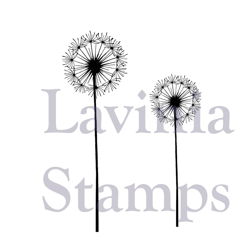 Lavinia - Fairy Dandelions - Lav 373