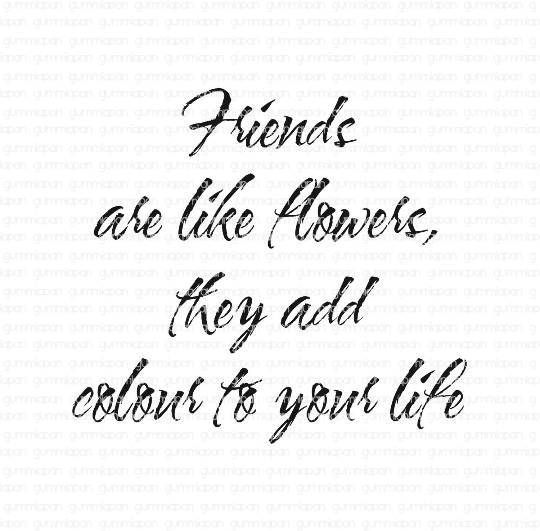 Gummiapan - Friends are like.......- umontert stempel