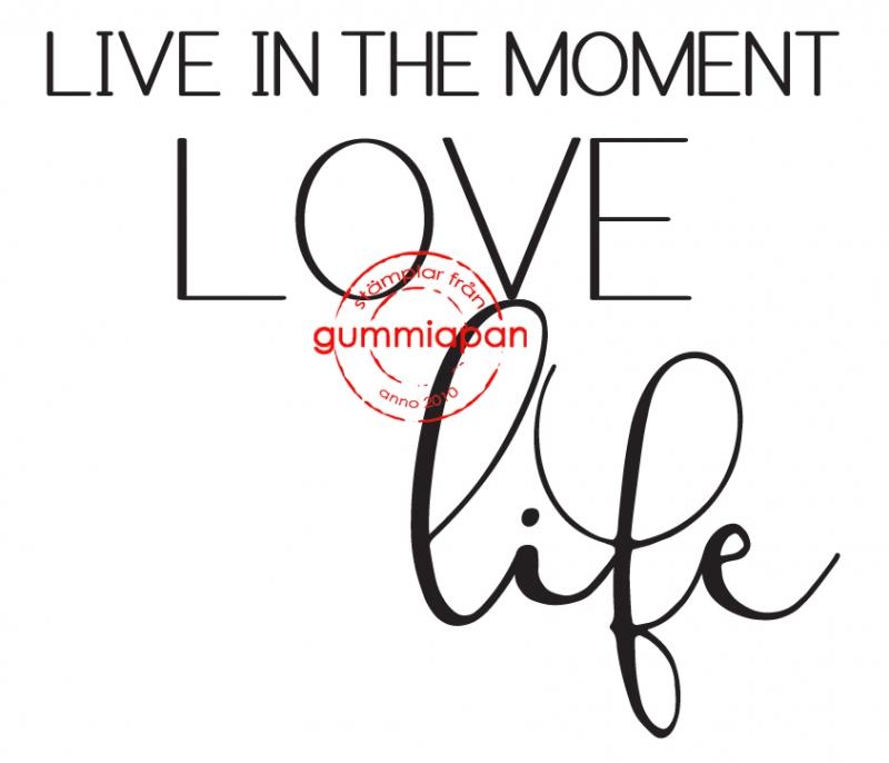 Gummiapan - Live in the moment......- umontert stempel