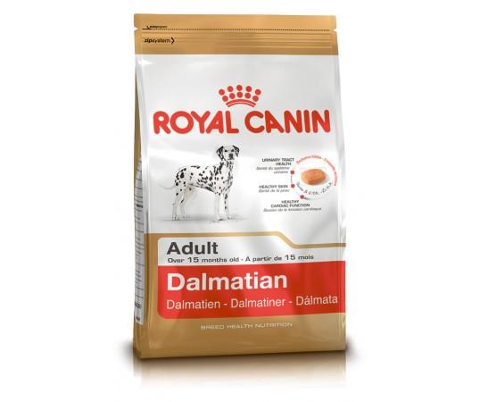 RC Dalmatien Adult 12 KG