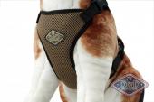 Hundesele All Season Kald/Varm 62-84cm L