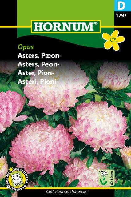 P.FRØ ASTERS PÆON OPUS (D)