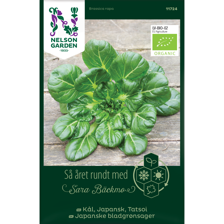Japanske bladgrønnsaker, Tatsoi, Organic